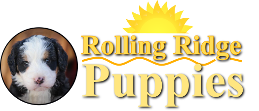 Rolling Ridge Puppies web logo
